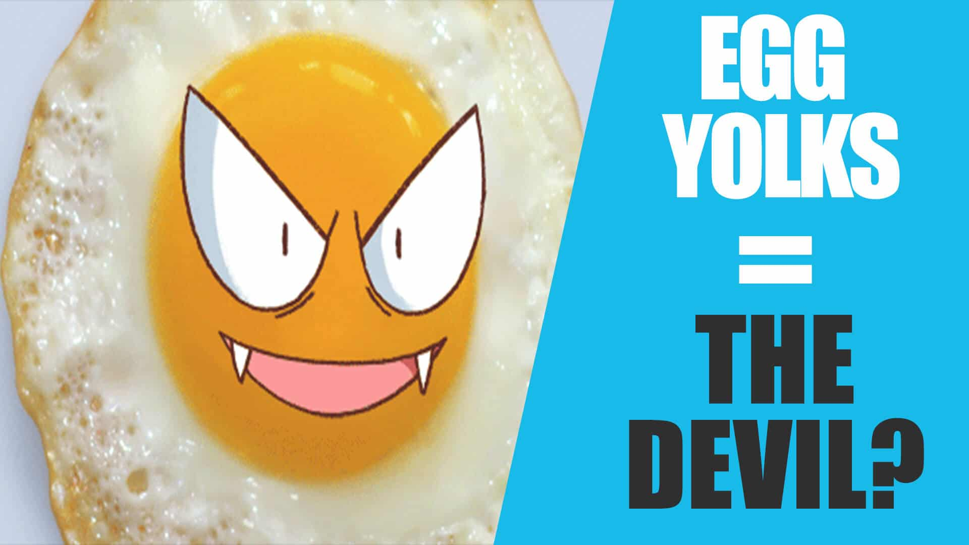 Egg Yolks = Unhealthy? Cholesterol? Heart Disease? | The Egg Yolk Debate