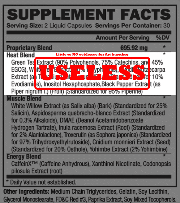 Fat burners -useless ingredients | Top 5 Supplements that are a Complete WASTE OF MONEY