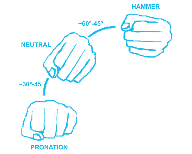 Pronation, Neutral and Hammer Grip | OVERHAND vs UNDERHAND Tricep Extensions | What's better?